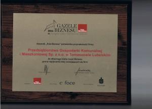 Gazele Biznesu 2015